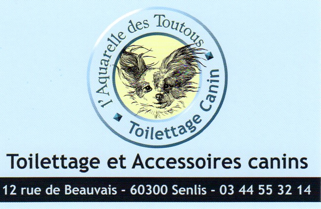 Salon De Toilettage Chiens A Senlis